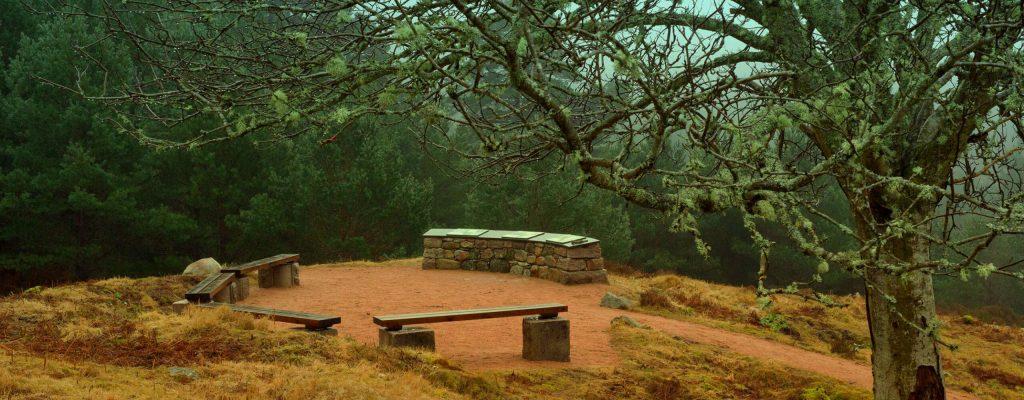 Knockie Viewpoint - Glen Tanar, Aberdeenshire